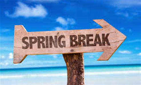 Spring Break: The Ultimate Experience